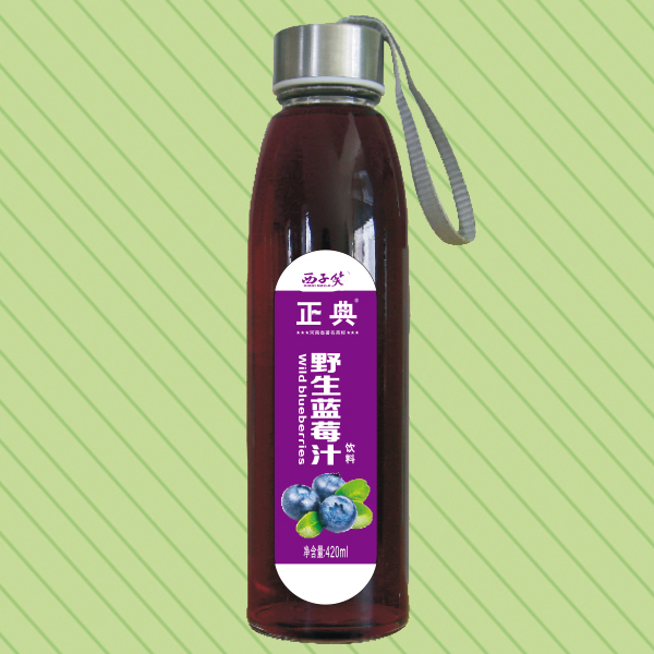 420ml正典野生蓝莓汁水杯瓶